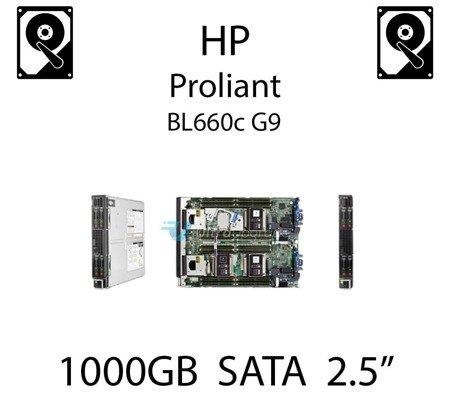 """1000GB 2.5"""" dedykowany dysk serwerowy SATA do serwera HP ProLiant BL660c G9, HDD Enterprise 7.2k, 6Gbps - 656108-001 (REF)"""