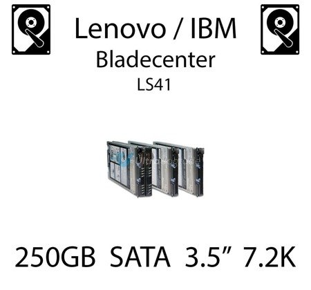 "250GB 3.5"" dedykowany dysk serwerowy SATA do serwera Lenovo / IBM Bladecenter LS41, HDD Enterprise 7.2k, 300MB/s - 43W7750"