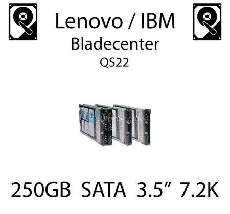 "250GB 3.5"" dedykowany dysk serwerowy SATA do serwera Lenovo / IBM Bladecenter QS22, HDD Enterprise 7.2k, 300MB/s - 39M4508"